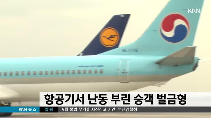 항공기서  난동부린 승객 벌금 5백만원