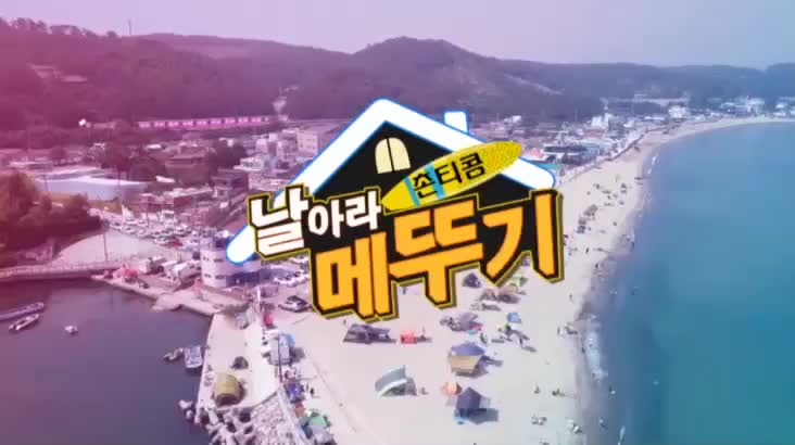 (09/11 방영) 촌티콤 날아라 메뚜기 13화