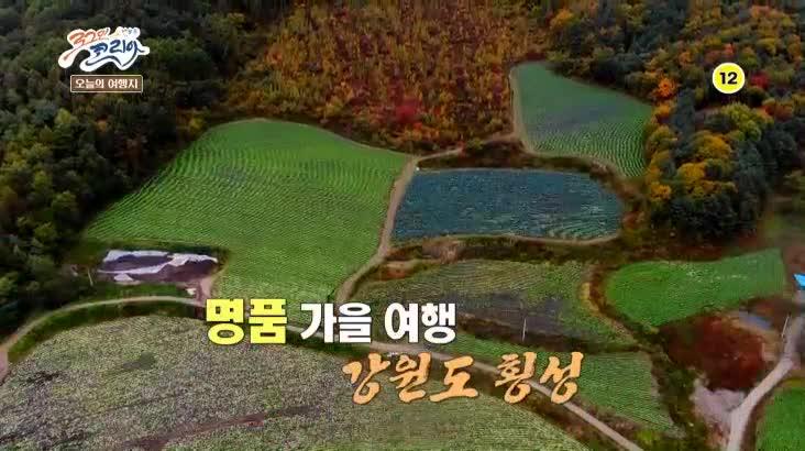 (11/03 방영) 뛰뛰빵빵 로그인 코리아