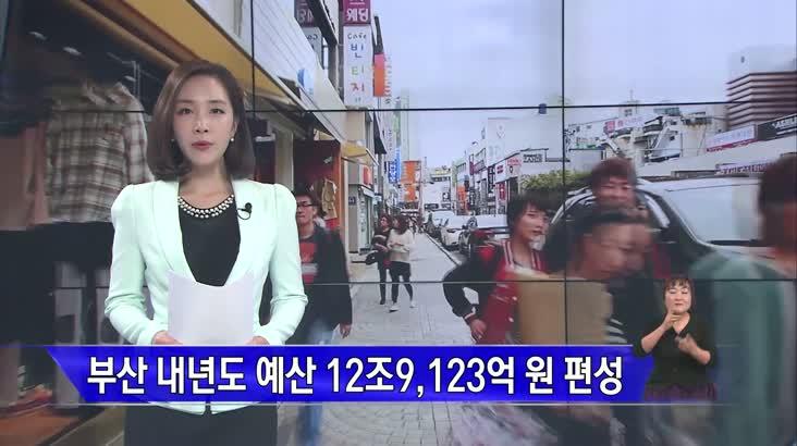 부산시 내년 예산 12조 9,123억 원 편성