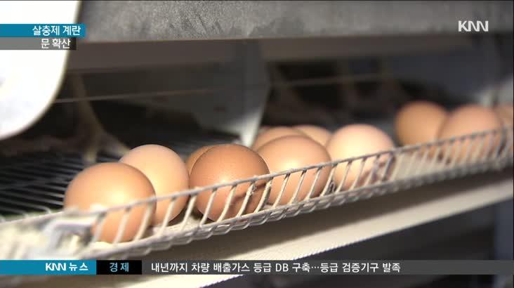 살충제 계란파문 확산