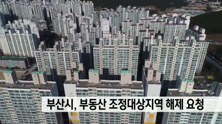 부산 부동산 조정대상지역 해제 요청
