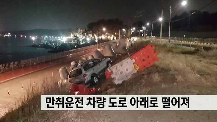 만취운전 차량 도로 아래 떨어져