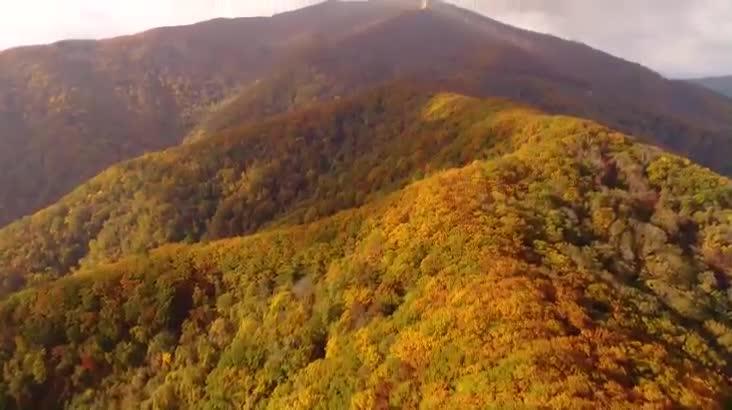 (12/21 방영) 대자연의 신비_발왕산을 가다
