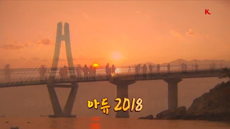 아듀 2018 영상