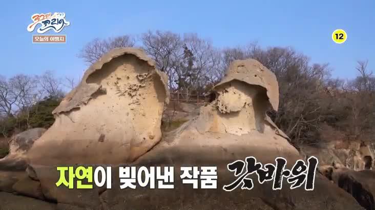 (02/23 방영) 뛰뛰빵빵 로그인 코리아