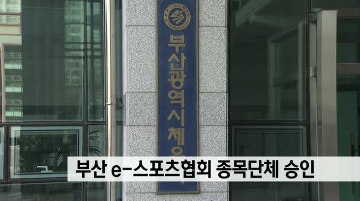 e스포츠협회 부산시체육회 정식 단체 승인