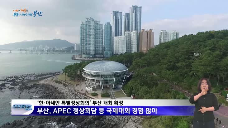 한·아세안 특별정상회의 부산 개최 결정