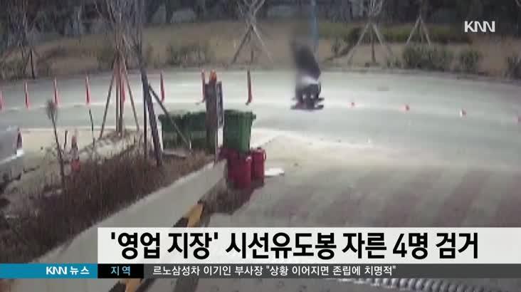 '상가 영업 지장' 시선유도봉 자른 4명 검거