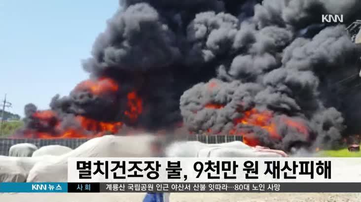 멸치건조장 불…9천만원 재산피해