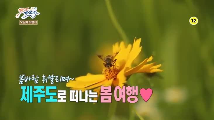 (04/27 방영) 뛰뛰빵빵 로그인 코리아