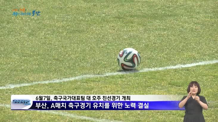 축구국가대표 친선경기(A매치) 부산 개최