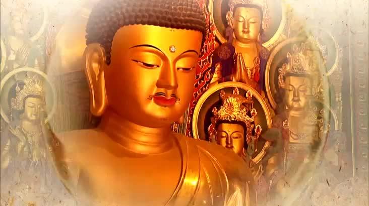 (05/12 방영) 불기2563년 부처님 오신날 봉축대법요식