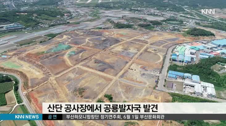 시공사가 공룡화석 발굴 교수 입막음 논란