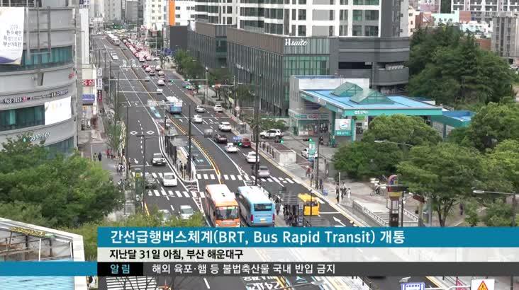 BRT 동래~해운대 전면 개통, 효과는?