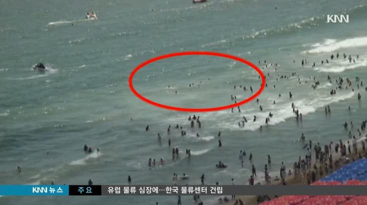 '모래 없다' 해운대 역파도 대책 구멍