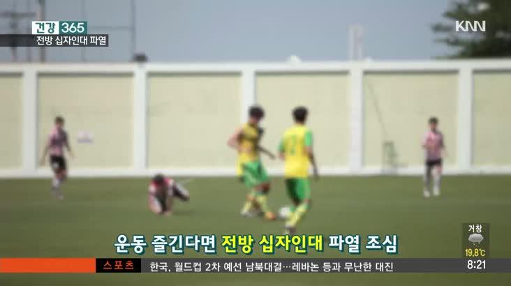 전방십자인대파열 (김창규 / 해운대부민병원 관절센터 과장)