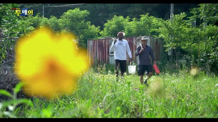 (07/10 방영) 무사의 전원일기 – 합천 외곡마을 3부