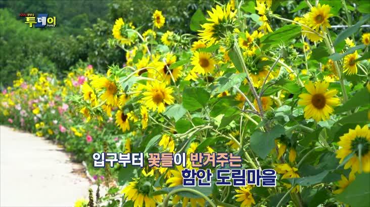 (07/16 방영) 나상도의 신바람 S.O.S – 함안 도림마을