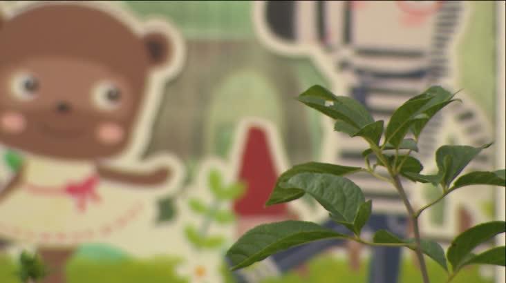 창원서 어린이집 아동학대 의혹