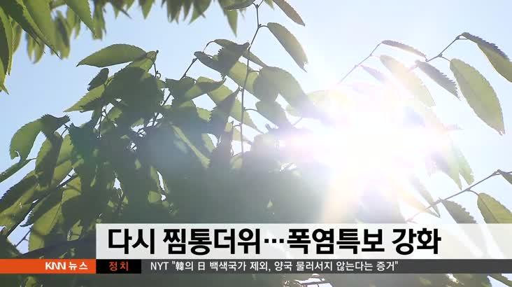 뉴스와 생활경제 날씨 8월13일(화)