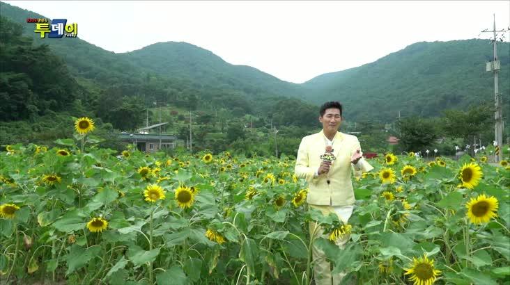 (08/13 방영) 나상도의 신바람 S.O.S – 밀양 내대마을