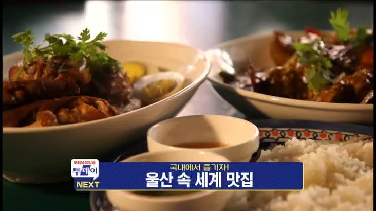 (08/19 방영) KNN 생방송 투데이
