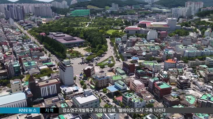 유엔참전기념탑, '욱일기' 문양 논란
