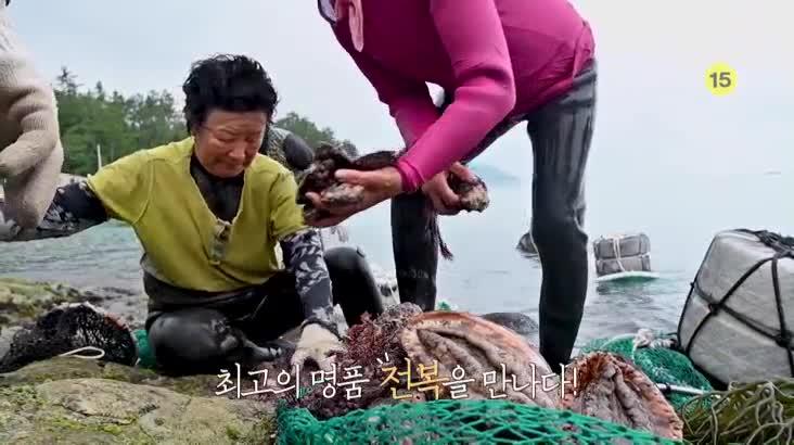(08/20 방영) 섬마을할매 – 브라보! 해녀 라이프 2부