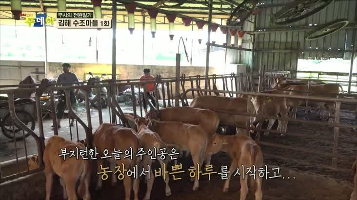 (08/19 방영) 무사의 전원일기 – 김해 수조마을 1편