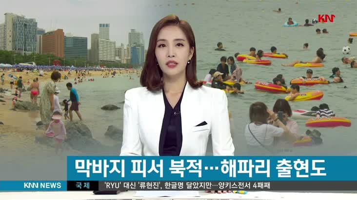 (08/24 방영) 뉴스아이