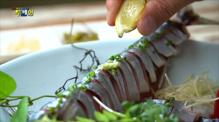 (08/27 방영) 부산. 경남 맛지도 – 활고등어 요리 & 고등어 초회. 회밥