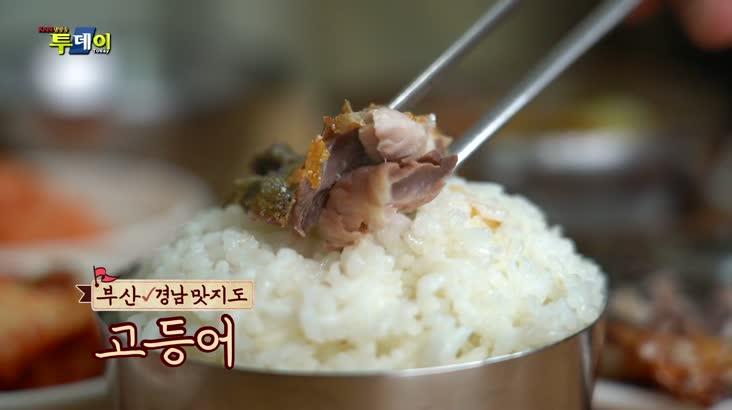 (09/17 방영) 부산. 경남 맛지도 – 가정식 고등어 백반 & 고등어 코스요리