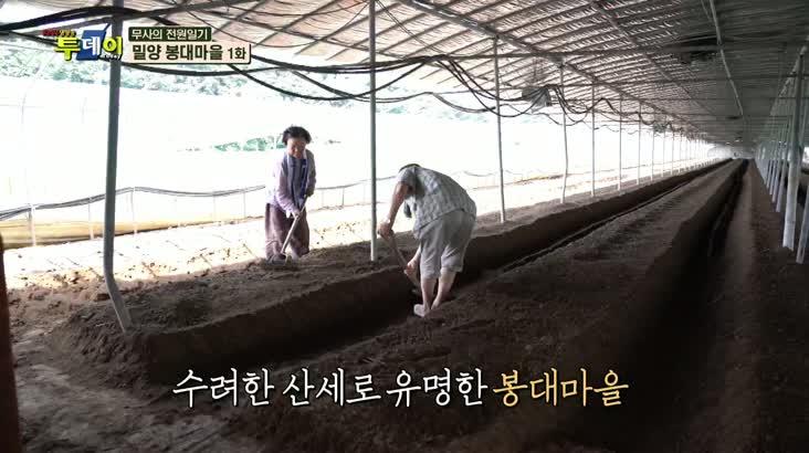 (09/16 방영) 무사의 전원일기 – 밀양 봉대마을 1편