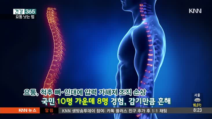 [건강365] 10명 중 8명이 겪는다? 요통 낫는 법!