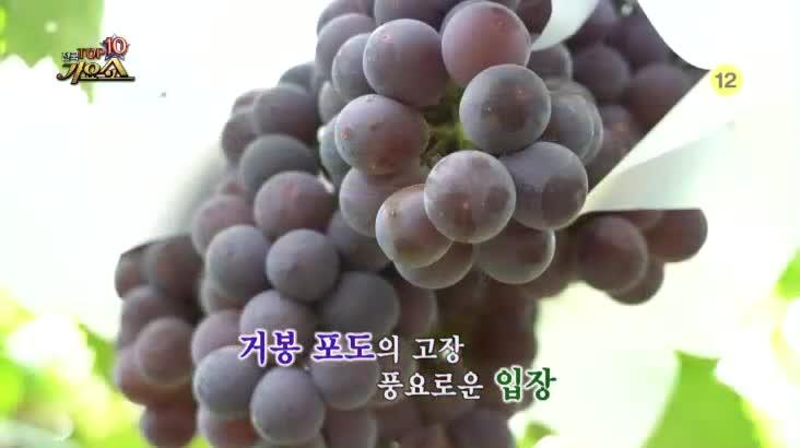 (09/21 방영) 전국 TOP10 가요쇼