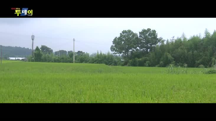 (09/30 방영) 남도식객 – 영암 육낙탕탕이