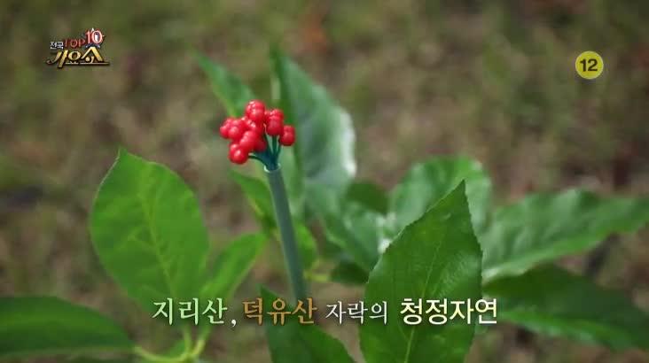 (10/05 방영) 전국 TOP10 가요쇼