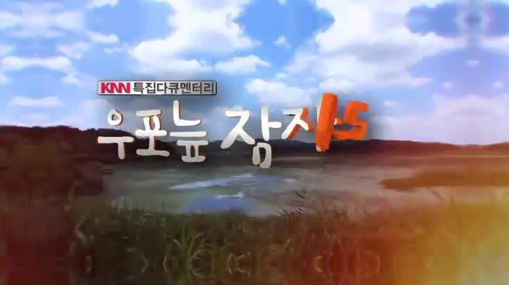 (10/11 방영) 특집다큐 우포늪 잠자리