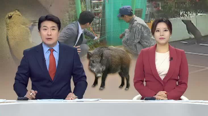 (10/15 방영) 뉴스아이