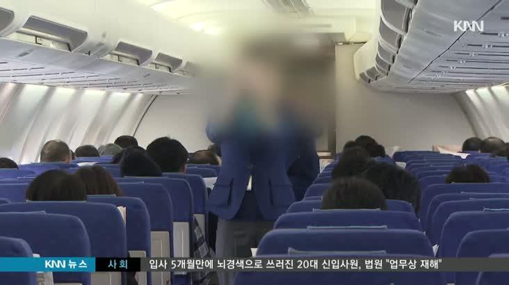 승무원 폭행 재일교포 항소심도 징역형