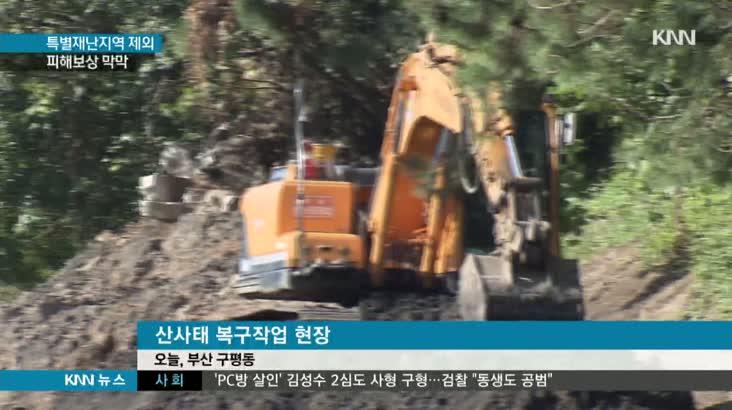 '특별재난지역 무산', 산사태 피해보상 막막