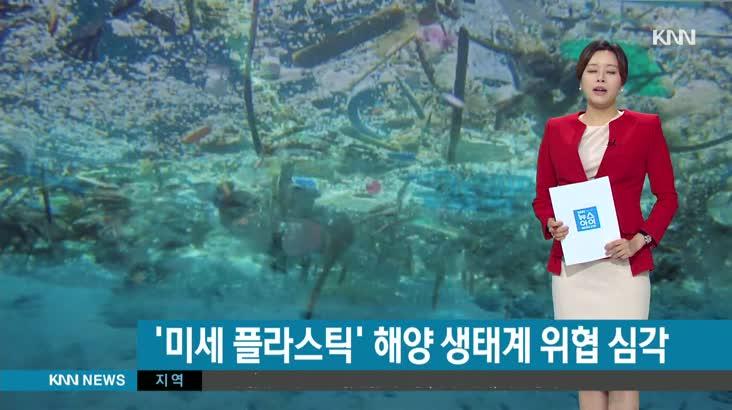 해양 생태계 위협, 미세플라스틱의 습격