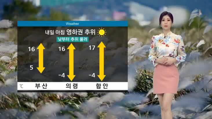 뉴스아이 날씨 11월14일(목)