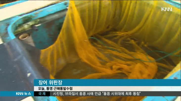 바다장어 소비부진에 조업 중단