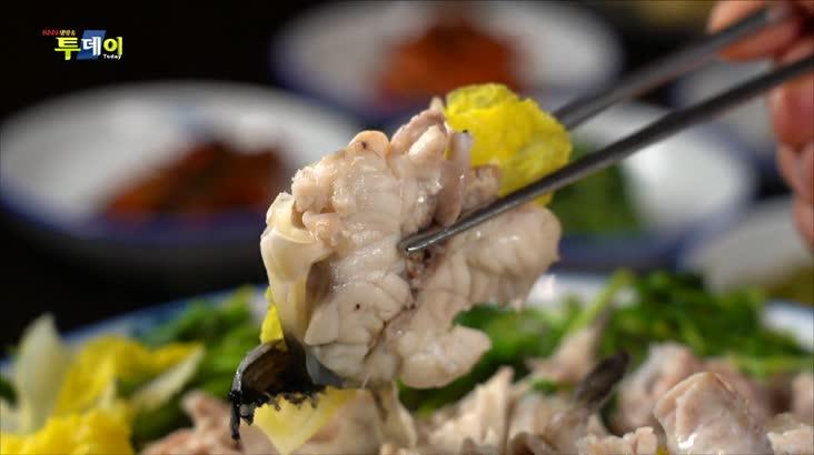 (11/19 방영) 부산.경남 맛지도 – 31년 전통 복요리 & 복어 코스요리