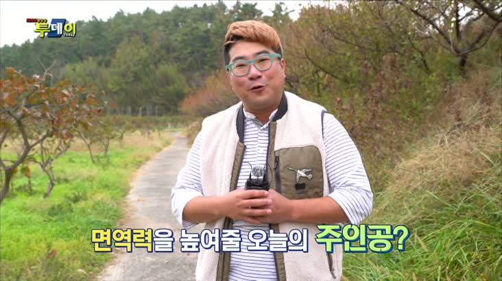 (12/03 방영) 풍물 (맛과 면역력 키워! – 사천 키위)