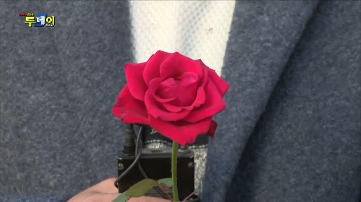 (12/09 방영) 충북 청주 – 꽃이 피어나는 겨울