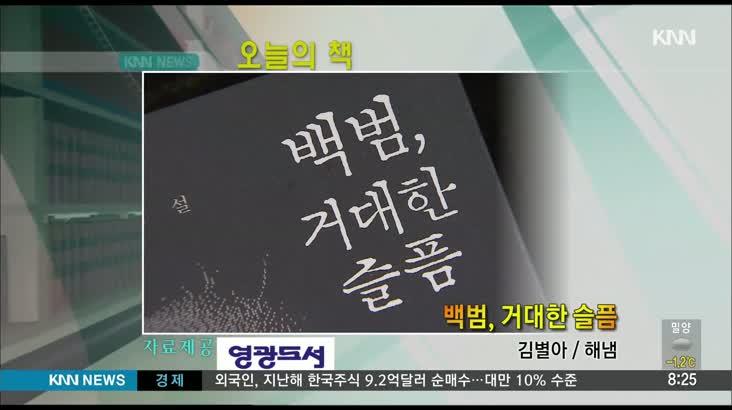 (오늘의 책)백범, 거대한 슬픔 1/16
