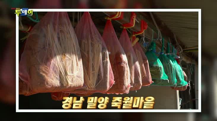 (01/29 방영) 나상도의 신바람 SOS – 밀양 죽월마을